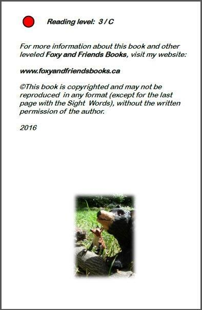 https://foxyandfriendsbooks.ca/wp-content/uploads/2016/11/2Inside-front-cover-Hide-and-Seek.jpg