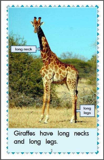 https://foxyandfriendsbooks.ca/wp-content/uploads/2016/11/3Inside-page-1-Giraffes.jpg