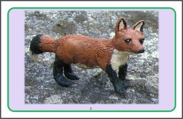 https://foxyandfriendsbooks.ca/wp-content/uploads/2016/11/4Inside-page-2-Meet-Foxy.jpg