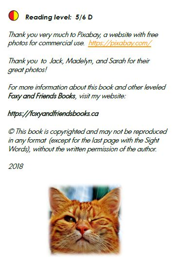 https://foxyandfriendsbooks.ca/wp-content/uploads/2018/08/Look-at-me-inside-front-cover.jpg